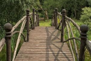 agrotutystyka-zezuj (20)