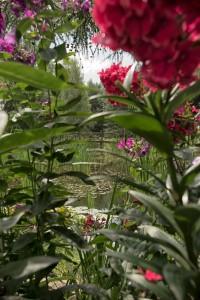 agrotutystyka-zezuj (3)